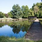 Edelkrebs, weiterer Zucht-Teich