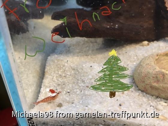 Fröhliche Weihnachten noch an euch und eure kleinen Zwerge! ?