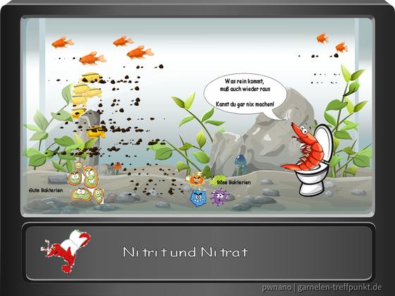 Die wichtigsten Wasserwerte - Comic 3 - Nitrit Nitrat (erstellt mit PaintShop ProX8)