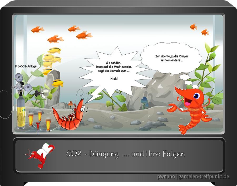 Die wichtigsten Wasserwerte - Comic 4 CO2 Düngung (erstellt mit PaintShop ProX8)