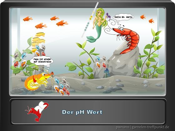 Die wichtigsten Wasserwerte - Comic 1- Der pH Wert (erstellt mit PaintShop ProX8)
